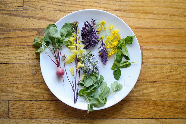 FoodByTom.CookingClass.2015-KatieDudleyPhotography-6