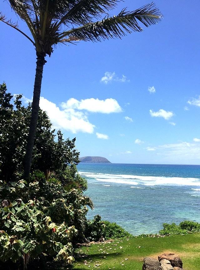 melissa-hawaii-silhouette-summit-2